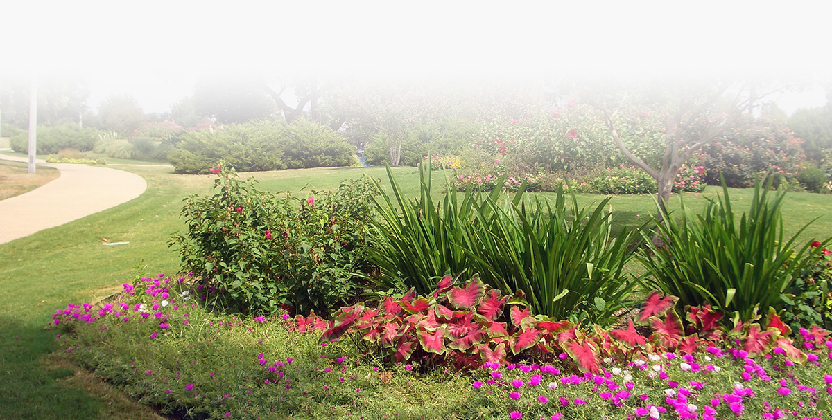 armstrong-park-landscaping-10