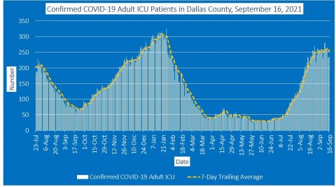 2021-09-16 - confirmed covid-19 adult icu inpatients in dallas county